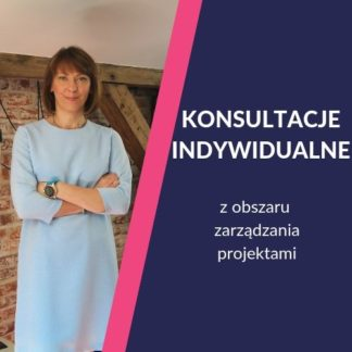 Konsultacje project management